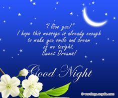 Share some romanticand sweetGoodnight messages for your special someone and loved ones tonight and make their day complete. After a long and tiring day, everyone wants something that could stole them away from the stress of the day. So cuddling…