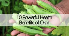 Okra contains cancer fighting enzymes and reduces the risk of diabetes and heart disease. The list of health benefits of this veggie is a long one!