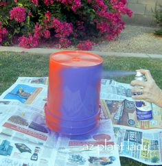 DIY Plant Containers - Birds and Blooms