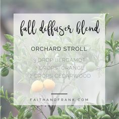 essential oil recipe for anxiety and depression essential oil diffuser recipes for depression Fall Essential Oils, Essential Oil Diffuser Blends, Essential Oil Uses, Diffuser Recipes, Aromatherapy Oils, Potpourri, Pumpkins, Trust, Young Living