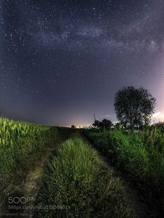 Milky Way on the river Mius  Russia Rostov region village Troitskoe. Nikon D700Zenitar 16 mm. Panorama from 3 horizontal frames iso 3200 f/4 15 sec backlight phone PTGui Lr treatment is minimal.  Image credit: http://ift.tt/1ZNCmnA Visit http://ift.tt/1qPHad3 and read how to see the #MilkyWay  #Galaxy #Stars #Nightscape #Astrophotography