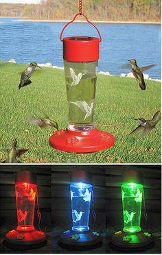 solar hummingbird feeder   ... Bird Accessories > Hummingbird Feeders > Red Solar Hummingbird Feeder