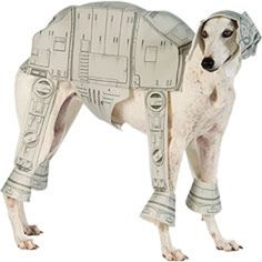 Get Star Wars dog costumes for your family pet this Halloween at a discount price. Find dog costumes from Star Wars such as Princess Leia and Yoda. Dog Costumes For Kids, Large Dog Costumes, Up Halloween Costumes, Diy Dog Costumes, Costume Ideas, Star Wars Halloween, Dog Halloween, Halloween Ideas, Halloween Party