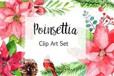 Watercolor Poinsettia Clip Art Set  by Tati Bordiu on @creativemarket