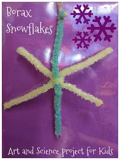 More Winter Fun!  Pipe cleaner snowflakes with borax!