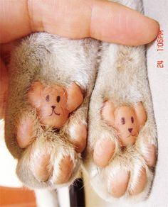 way way too cute! Kitty paws