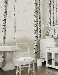 i love birch trees - they're great a great image for room decorating because of their thin vertical lines yet organic nature.