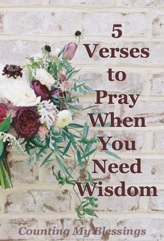 5 Verses to Pray When You Need #Wisdom - Counting My Blessings #Prayer #Bible