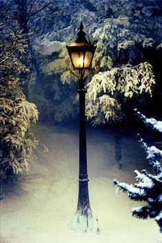Narnia Theme 🦁🌲❄  Lamppost for Ceremony