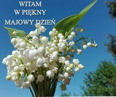 1. Mai, My Secret Garden, Garden Gates, Good To Know, Humor, Pictures, Motto, Fan, Good Morning