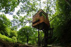 Stelzenhaus Baumhaus bauen Takashi Kobayashi-Japan