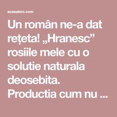 """Un român ne-a dat rețeta! """"Hranesc"""" rosiile mele cu o solutie naturala deosebita. Productia cum nu m-am asteptat vreodata! Iata care este reteta Roman, How To Get Rid, Diy And Crafts, Gardening, House, Permaculture, Agriculture, Plant, Lawn And Garden"""