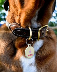 Mother's Day is a week away, so if you still looking for a gift (you definitely didn't forget), this cute tag is a good option. Pet Id Tags, Dog Tags, My Heart, Forget, Pets, Gift, Gifts, Animals And Pets