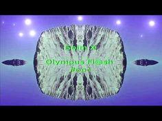 Olympus Flash  #001
