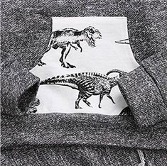 Younger star Toddler Infant Baby Boys Dinosaur Long Sleeve Hoodie Tops Sweatsuit Pants Outfit Set Gray 1824Months  100 *** Check out the image by visiting the link. (This is an affiliate link)