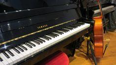 Bom dia! Procura um piano acústico, vertical ou de cauda? Venha ao Salão Musical de Lisboa ou consulte o nosso site www.salaomusical.com