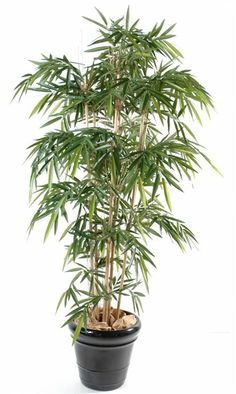 Bambou artificiel new 270cm