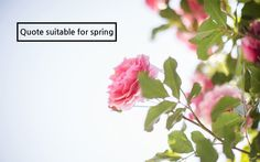 """Quote suitable for spring  1. """"You can cut all the flowers but you cannot keep Spring from coming."""" - Pablo Neruda -  2. """"Spring is the time of plans and projects."""" - Tolstoy -  3. """"Spring is when life's alive in everything."""" - Pearl S Buck -  4. """"I believe in God, only I spell it Nature."""" - Ralph Waldo Emerson -  5. """"Winter is on my head, but eternal spring is in my heart."""" –Bill Gates -"""