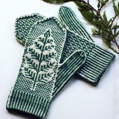 Inspired by underbrush on the Wild Pacific Trail, Brackthaw features a botanical motif emerging from the ice and a small allover design on the palm. Knitted Mittens Pattern, Knit Mittens, Knitted Gloves, Knitting Socks, Hand Knitting, Knitting Designs, Knitting Projects, Knitting Patterns, Diy Crochet And Knitting