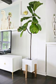 Mid century wooden plant stand DIY