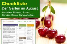 Checkliste Garten im August: Zurückschneiden, düngen, ernten und weitere wichtige Gartenarbeiten
