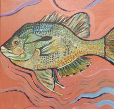 Redbreast Sunfish by SG Criswell; 12x12""