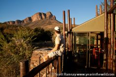 Tracking the Wild African Safari, Conservation, South Africa, National Parks, Destinations, Wildlife, Southern, Explore, Viajes