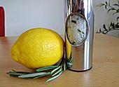 Zitronen-Salz (lemon salt)