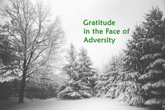 As winter has settled upon us, I have faced some adversity. It would be easy to complain, to feel victimized—but instead—I choose gratitude! via @Heirlooms and Horrors