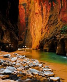 See More |  Zion National Park, USA: