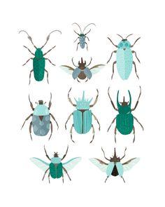 Art Print  Beetle Identification Chart Blue by smalltalkstudio, $20.00