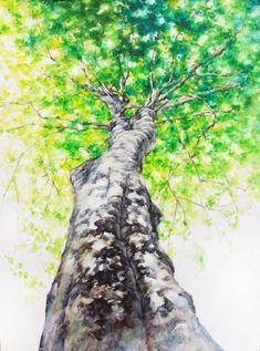 안녕하세요. 꿈꾸는 자작나무 미술학원입니다 ^^ 추워서 웅크린 시간이 얼마 전 같은데 언제인지 모르게 따... Tree Watercolor Painting, Watercolor Drawing, Watercolor Landscape, Watercolor Flowers, Foreground Middleground Background, Trees Drawing Tutorial, Tree Sketches, 4th Grade Art, Abstract Nature