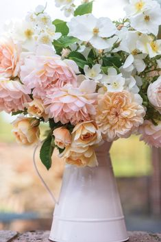 Behind the brick walls and hedges surrounding David Austin's Shropshire, England, rose gardens, beds await —brimming with the queen of flowers in the flush of their prime.