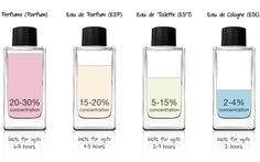 Perfume (Parfum) Eau de Parfum (EDP) Eau de Toilette (EDT) Eau de Cologne (EDC)... #perfumelovers #perfume