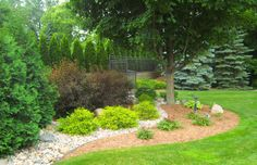 Create inviting coverage between two properties that is a substitue for a hedge row. Kim- smithtree.com