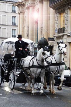 'Parce que, comprenez-vous, au grand galop, c'est mon carrosse qui remonte la rue Saint-Honoré, Paris en cet instant-même.'