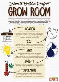How to Build a Perfect Grow Room: Whether you're starting a marijuana dispensary, or just cultivating for one, it's a good idea to understand the process that goes into constructing the ideal grow room. Growing Weed, Cannabis Growing, Ganja, Dry Nose, Marijuana Facts, Weed Facts, Grow Boxes, Grow Room, E Mc2