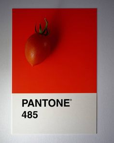 #red #tomato #pantone #color work #around Giochi di #rosso #pomodoro in salsa pantone #abstract #art #abstractart #abstracters_anonymous…