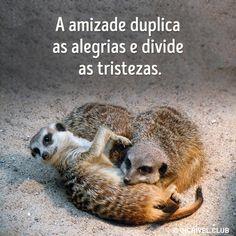 A amizade duplica as alegrias e divide as tristezas