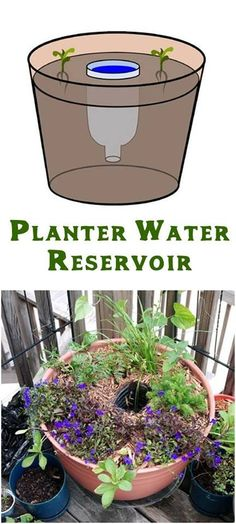 #Gardening : Self-Watering by Water Reservoir