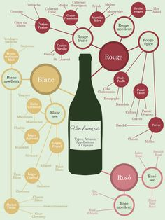 Travel and Trip infographic Carte mentale des vins Infographic Description Carte mentale des vins - Infographic Source - Cocktails Vin, Wine Descriptions, Wine Infographic, Wine Club Monthly, Wine Folly, Wine Names, Sauvignon, Buy Wine Online, Wine Glass Rack