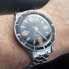 Vintage 1st gen Certina DS diver. That dial... Pic credit: @dmgreen11 >>Tag @vintagediver to have your watch featured<< #vintagediver #divewatch #wis #watch #womw #wristporn #instawatch #dailywatch #seiko #omega #squale #heuer #tudor #watchgeek #watchfam #rolex #watchcommunity #hodinkee #thedivewatchconnection #wornandwound #horology #watchesofinstagram #certina #vintagecertina #certinads #patina #fadedbezel by vintagediver