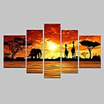 Hand Painted Oil Painting African Sunrise Giraffes Landscape Paintings with Stretched Frame Set of 5 2016 - $65.99