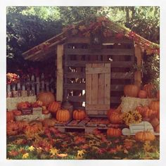 Can someone PLEASE build me this for a fall mini session?!  Pretty please?!!  @Stephanie Cason