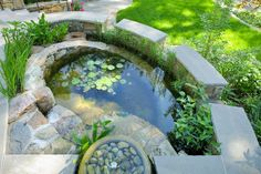 Water harvesting fish pond and rain garden in Arlington, Va.  Designed by Tom Mannion Landscape Design.