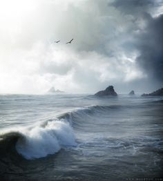 grey northern ocean - Google Search