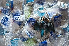 TV presenter Chris Packham has unveiled a series of images exploring the impact of litter on wildlife and the natural environment as part of a new initiative between Lidl and Keep Britain Tidy
