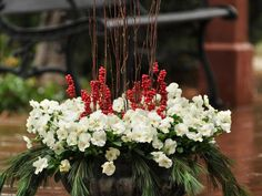 The holidays are a chance to bring your design sensibility outdoors. Improve your winter curb appeal and greet holiday visitors with a white pansy arrangement incorporating natural elements like boughs or branches. This long-lasting wintery container featuring bold, red berries will look stunning all season long.