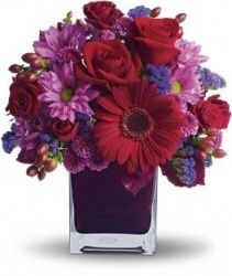 It's My Party by Teleflora http://www.aransasflowercompany.com/product_info.php?cPath=19&products_id=780