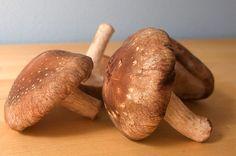 The health benefits of Shiitake mushrooms.